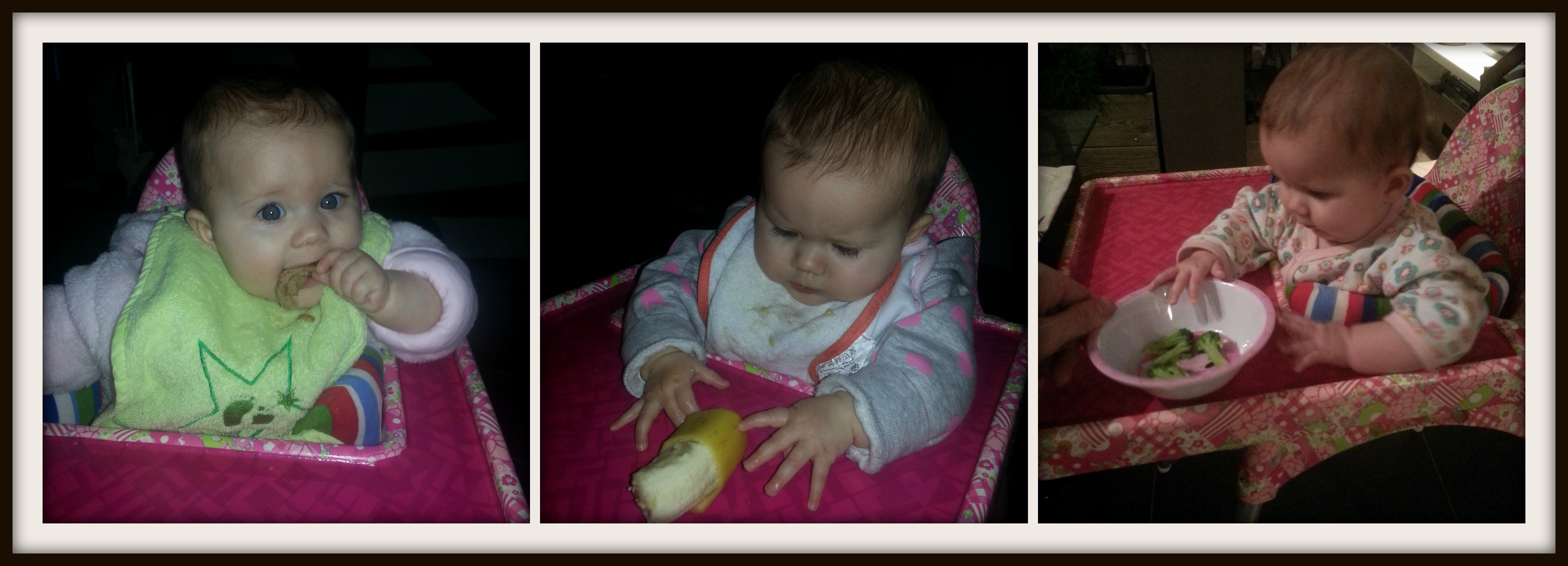 Baby eet Rapley - De aanpak & Hoe begonnen wij ermee?