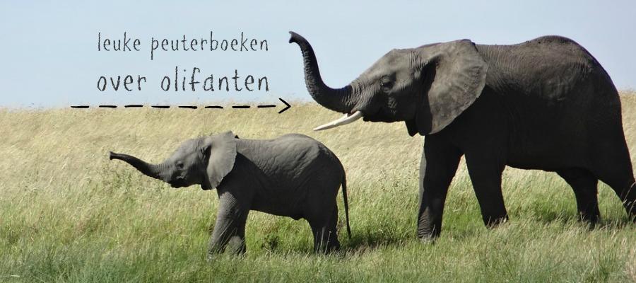 leuke peuterboeken over olifanten