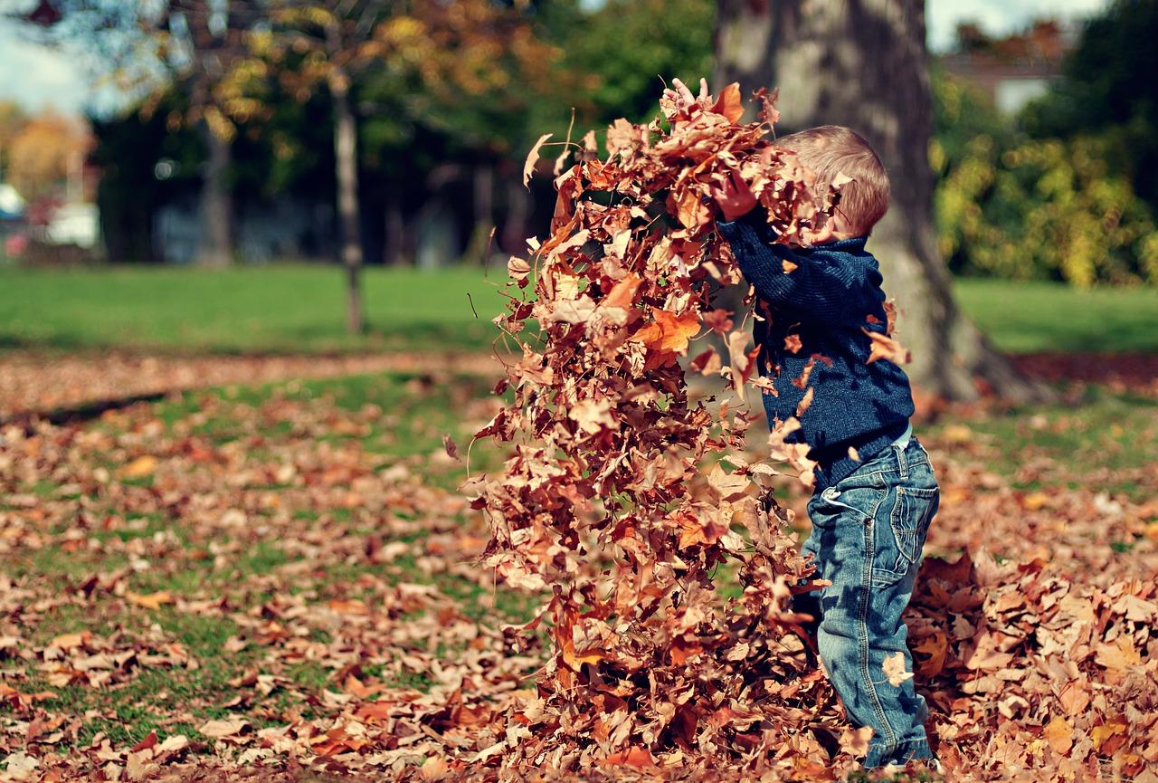 herfst knutselen